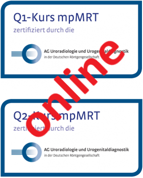 15. August 2020: Frankfurter Prostata-MRT Workshop ONLINE (Frankfurt am Main)